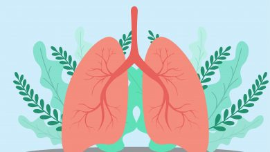 Photo of 8 Tips to Support Your Respiratory Health